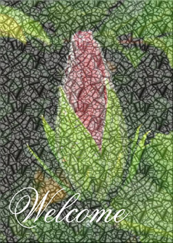 Windowpane Bud custom card cover